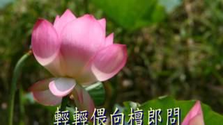 getlinkyoutube.com-荷花香