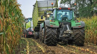 getlinkyoutube.com-Modderen in de mais extreem 2015 | Harvesting maize in the mud extreme | BMWW | Claas Jaguar 940
