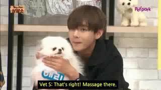 Eng Sub BTS V kisses a dog,fans gets jealous