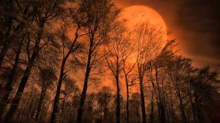 getlinkyoutube.com-Klaus Schulze - The Theme: The Rhodes Elegy [HQ]
