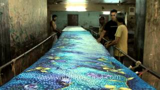 getlinkyoutube.com-Banaras Saree handloom Factory - A sneek peek!