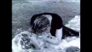 getlinkyoutube.com-Madonna - Cherish (Video)