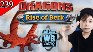 getlinkyoutube.com-4-Wing Singetail Unlocked - Dragons: Rise of Berk [Episode 239]