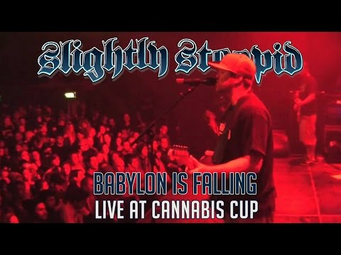 Babylon Is Fallin (Cannabis Cup)