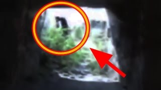 getlinkyoutube.com-5 Real Witches Caught On Camera | Top 5