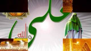 علي مسلم ~ وآلي اللذي وآلاه