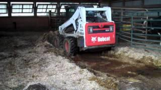 getlinkyoutube.com-Bobcat S650 cleaning the heifer pen.
