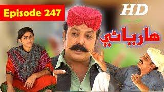 Hareyani Ep 247  Sindh TV Soap Serial    16 5 2018   HD1080p  SindhTVHD Drama