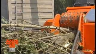getlinkyoutube.com-Tocator lemn - biomasa cu tambur GANDINI CT 50-75 TTS