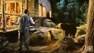 getlinkyoutube.com-Dr. Dolittle 2 (2001) - trailer