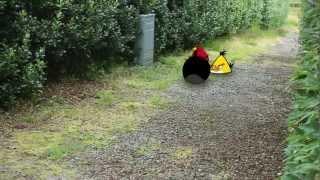 getlinkyoutube.com-Angry Birds Attack
