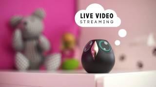 getlinkyoutube.com-Ulo, interactive home monitoring owl