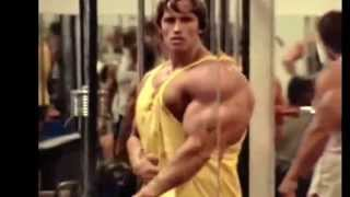 getlinkyoutube.com-Arnold Schwarzenegger and The ROCK   Bodybuilding