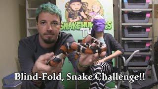 BLIND-FOLD, SNAKE CHALLENGE!!