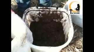 getlinkyoutube.com-Подготовка почвы под рассаду
