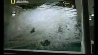 getlinkyoutube.com-Le Gustloff: la plus grande catastrophe maritime de tous les temps (3/5)