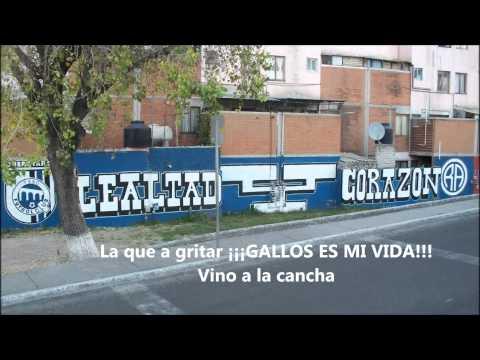 PEDRO NAVAJA *RESISTENCIA ALBIAZUL* (LOS JOAO)