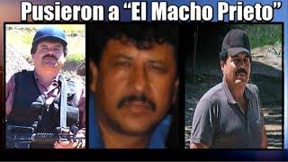 """getlinkyoutube.com-""""El Chapo"""" y el """"Mayo"""" pusieron a """"El Macho Prieto"""""""