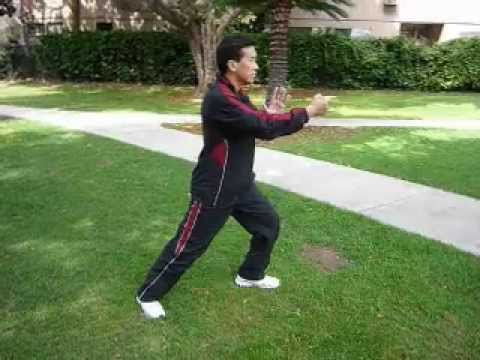 Yang Style Tai Chi Chuan 108 section 1