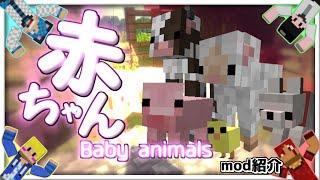 【MOD紹介】赤ちゃん【RAMS】