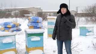 getlinkyoutube.com-Зимовка пчел