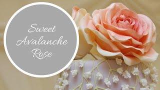 getlinkyoutube.com-Sweet Avalanche Rose Tutorial