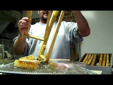 COMB HONEY Cutting Basics Video,Chunk Honey Honeycomb Beekeeping,Beekeeper John Pluta Georgia Bees