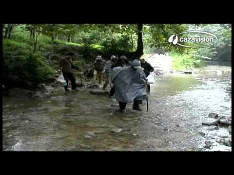 Lances de caça. Grandes javalis no Irão