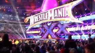 WWE WrestleMania 30: Brock Lesnar Entrance