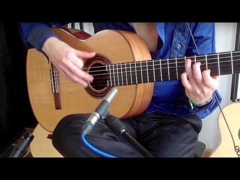 Iron Maiden (acoustic) - The Clansman - Thomas Zwijsen feat. Blaze Bayley