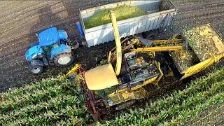 getlinkyoutube.com-Prototype New Holland gescheiden inzameling van maïsstro en –kolf | Agri-Power / Kenis nv