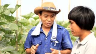 getlinkyoutube.com-Smart Farmer- เมล่อน 1/2