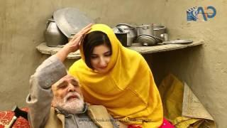 pashto Gul song panra new