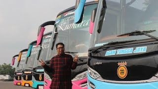 getlinkyoutube.com-Review Agam Tungga Jaya Luxury Bus (ELKUSLA)