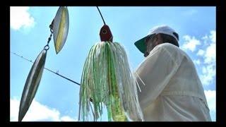 Especial Top Dicas - Pescaria de Traíras com Spinner Bait em Porto Amazonas