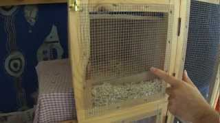 getlinkyoutube.com-How to setup the perfect nesting box for cockatiels