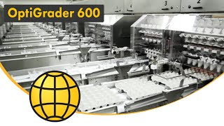 Egg Grading with Automation - OptiGrader Series - STAALKAT