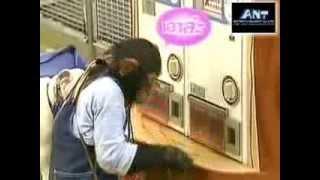 getlinkyoutube.com-ขำกลิ้งลิงกับหมา (V.12 Full) ตอน ภารกิจเก็บเกาลัดในฤดูใบไม้ร่วง