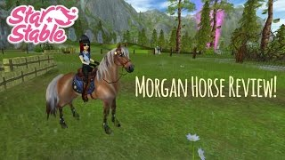 getlinkyoutube.com-Morgan Horse Review! // Star Stable Online