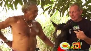 getlinkyoutube.com-HOMENS DE 30 ANOS TEM RELAÇÕES COM EGUA DE 6 MESES NO BODE NA TV 05 03 2013
