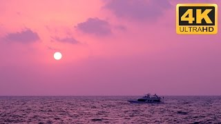 The Most Relaxing Video on Youtube of a Purple Sunset