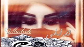 getlinkyoutube.com-شيلة   تدللي اداء  عبدالعزيز العليوي 2016