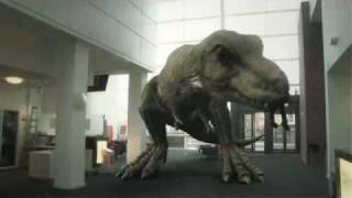 getlinkyoutube.com-T. Rex In The Atrium (2010)