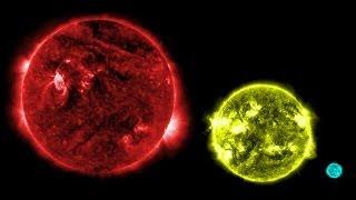getlinkyoutube.com-Top 10 largest stars ever discovered