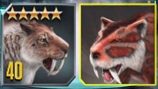getlinkyoutube.com-SMILODON Vs SMILODON - Jurassic World The Game Vs Jurassic Park Builder