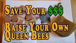 getlinkyoutube.com-Queen Rearing Cell Punch Kit Offer