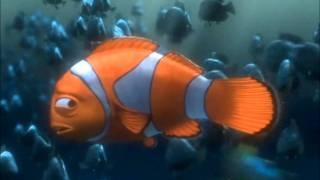 getlinkyoutube.com-YouTube Poop - Marlin Hates Nemo