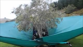 getlinkyoutube.com-Μηχανημα που μαζευει ελιες-machine collecting the olives