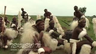 getlinkyoutube.com-Professional Zulu Dancing