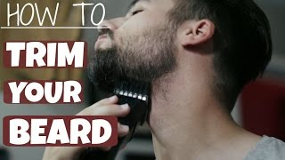 getlinkyoutube.com-How To Trim and Shape Your Beard | TheGentlemansCove